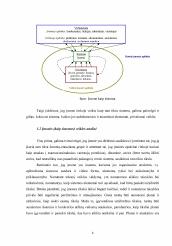 plėtojant sistemingas prekybos strategijas neviešosios bendrovės akcijų pasirinkimo sandoriai
